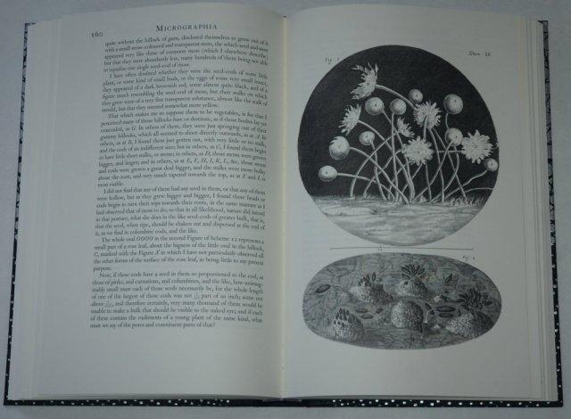 20180305 Micrographia 3